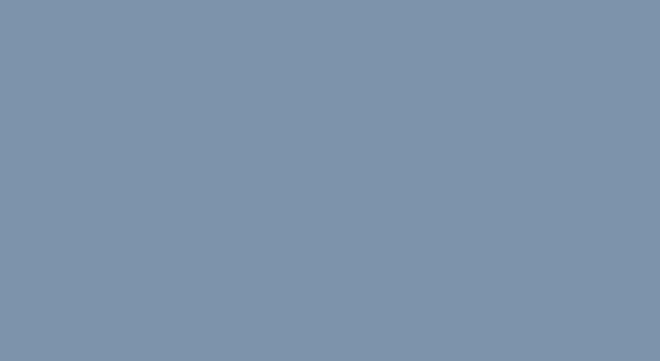 narrowSKY logo